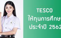 TESCO ให้ทุนปริญญาตรี 2562